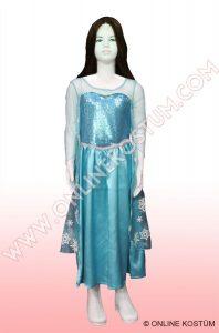 Buzlar Kraliçesi Elsa Kostümü