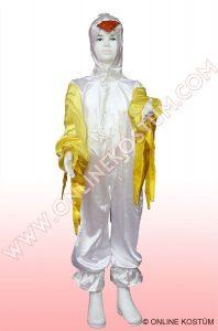 Kuş Kostümü