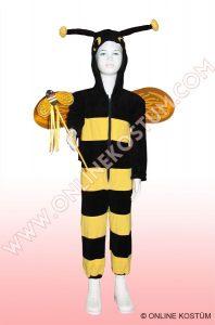 Arı Kostümü